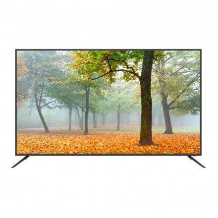 TV LED 65 Smarttech LE-6566UDSA